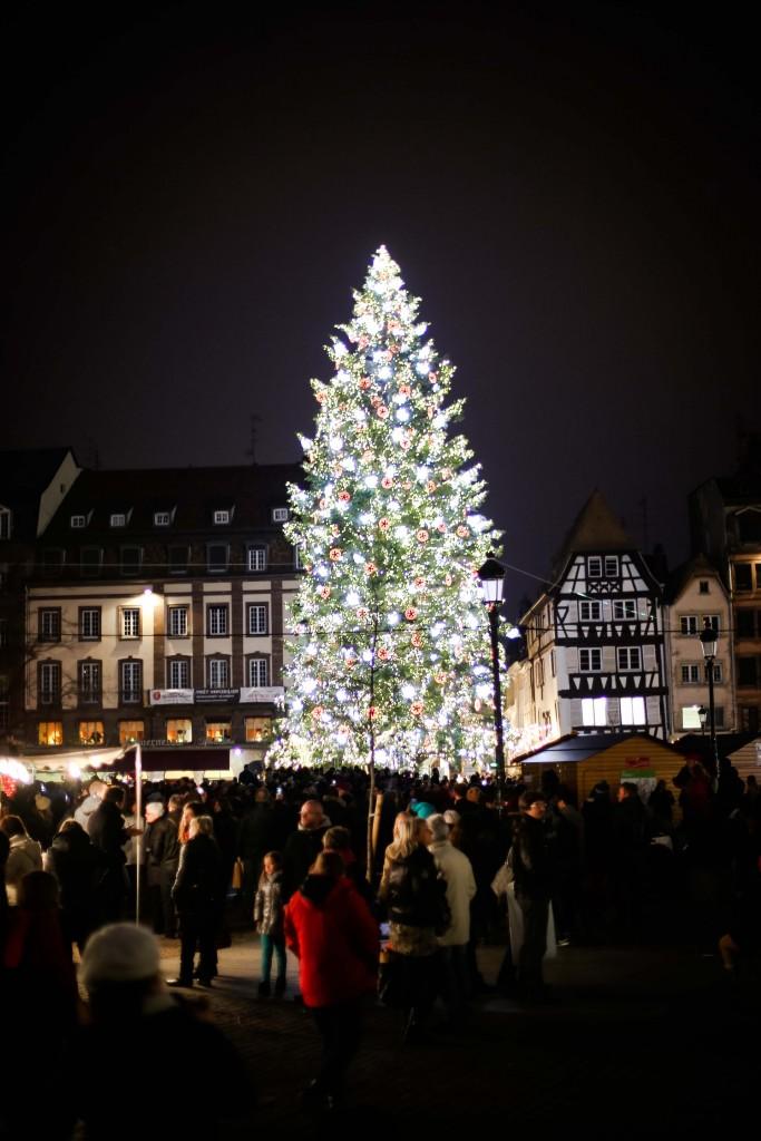 Strasbourg_8