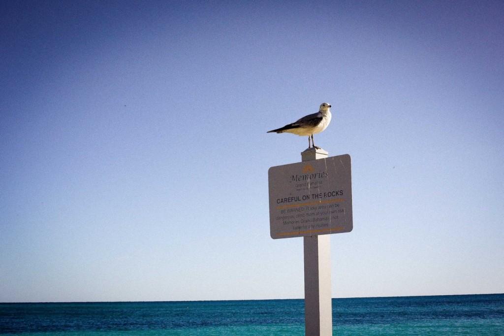 Bahamas_7