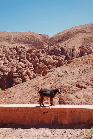 Marokko (9)